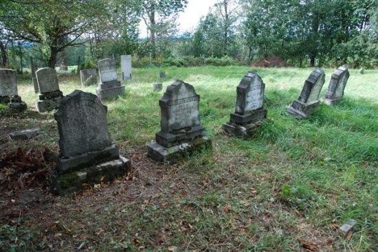 En activité environ de 1814 à 1933, ce cimetière familial regroupe principalement, tel que son nom l'indique, des individus liées aux familles Baldwin et Wheeler.  La plus ancienne stèle funéraire dont les inscriptions sont lisibles à ce jour appartient à Squire Wheeler, décédé le 4 mai 1814 à l'âge de 24 ans.