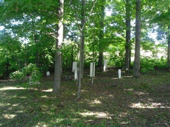 Parmi les stèles appartenant à des adultes, notons celle de Malvina Godding, adepte de l'Église adventiste, inhumée ici le 9 mai 1874, à l'âge de 32 ans. Rosetta Tillotson, décédée en février 1892, est une méthodiste. À part cette dernière, les personnes inhumées ici sont décédées entre les années 1866 et 1873. Aucun parent des enfants inhumés au Kinney Cemetery n'est enterré ici. Outre la dépouille de Laura A. Lafoe décédée à l'âge de 6 ans, les corps des enfants inhumés dans le cimetière appar