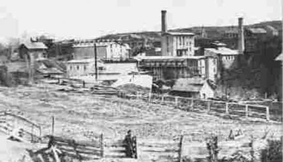 Beet Factory