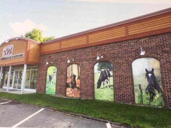 La Clinique vétérinaire de Coaticook est le résultat de l'initiative du vétérinaire Albert Fleurent qui s'associe à deux autres vétérinaires Paul Cardyn et Robert Dodier. La clinique est ainsi fondée en 1974. La Clinique prend forme sur la rue Main Ouest là où elle a toujours pignon sur rue aujourd'hui.